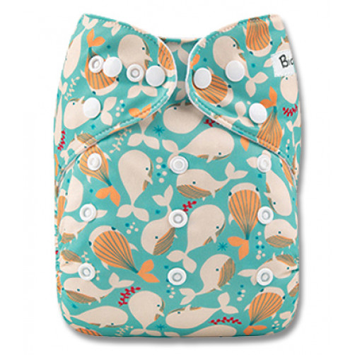 B244 Aqua Cream Orange Whales Pocket